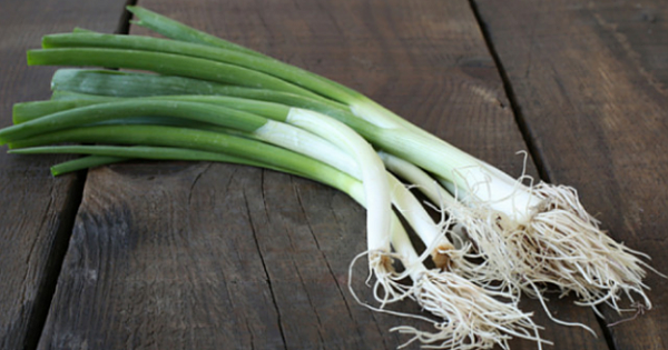 What Are the Benefits of Green Onion? What Is Good For? What Does Green Onion Do? Little-Known Benefits of Green Onion